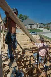 Men constructing green house